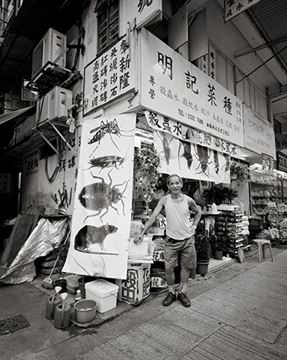 Picture of Ming Kee Seeds & Pest Control 明記菜種