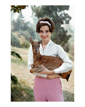 Picture of Audrey with her fawn during pre-production for Green Mansions, Audrey & Ip, 1958
