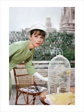 Picture of A yellow canary sings for a stylish Hepburn, Paris When It Sizzles, 1962